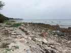 """Et stykke længere henne ad stranden var der meget stenet. Variationen i terrænnet stor og med gode muligheder for at finde """"spots"""" at slå lejr på."""