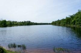 Batsto Lake