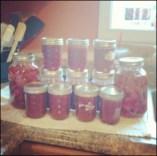Strawberry Stuffs