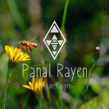 Panal Rayen