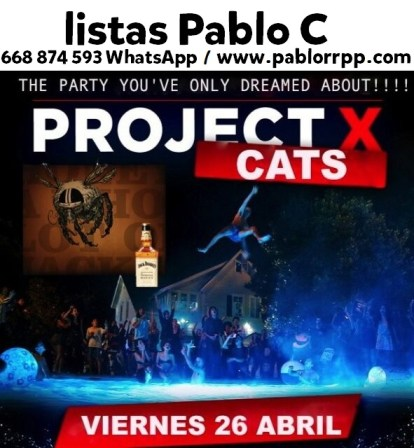 Cats26Abril