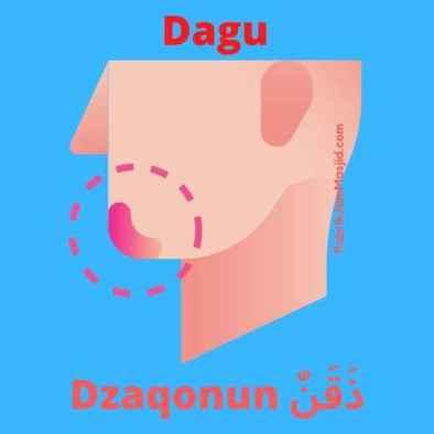 Dzaqonun Artinya Dagu Bahasa Arab