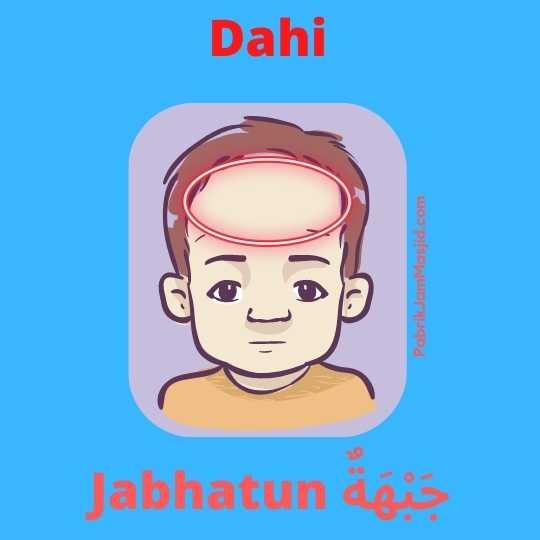 Jabhatun artinya dahi Bahasa Arab