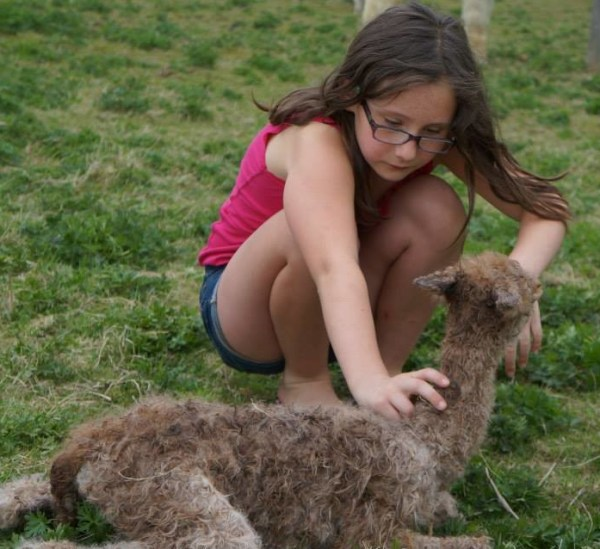 Madeline with cria