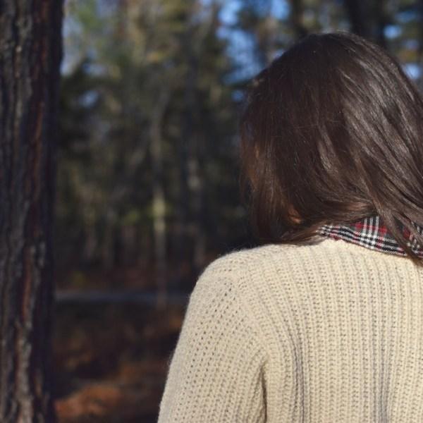 Rugged Abbott Farm Alpaca Sweater Back