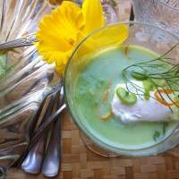 Fresh Pea Dreaming ~ Spring Pea, Fennel and Orange Soup with Pernod Whipped Cream
