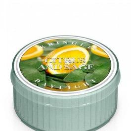 Kringle Candle Citrus and Sage Świeczka zapachowa 35g