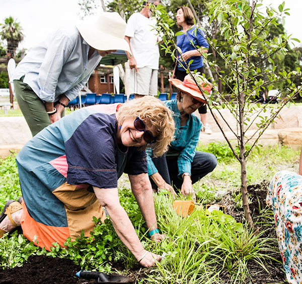 Local government reform necessary to urban agriculture's future