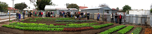 In Adelaide, a small urban farm links entrepreneurship with good food