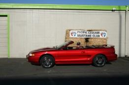 '98 Mustang Cobra Convertible