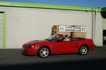 Mustang Convertible