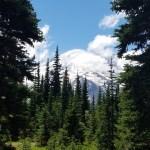 Cruise to Mount Rainier - July 2021