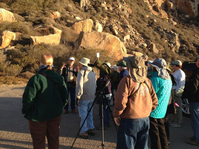 Eager birders listening to Bob Isenberg   Photo by Heather O'Connor