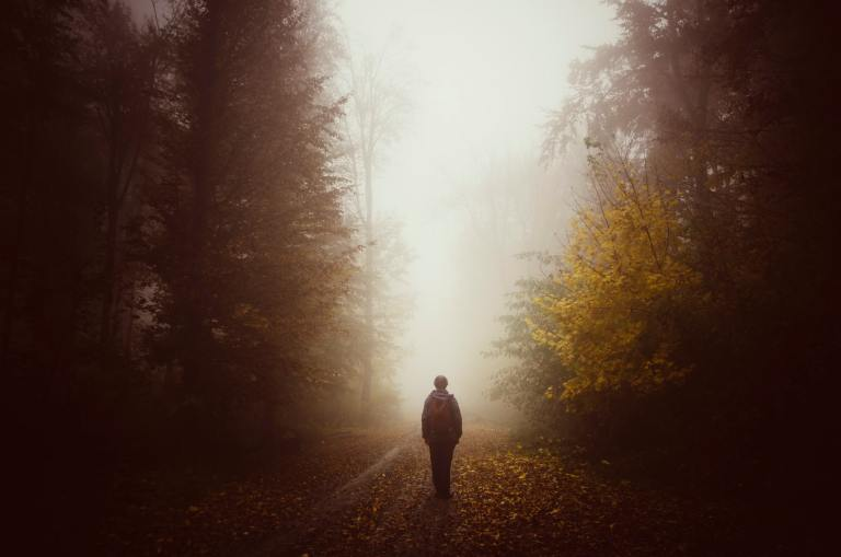 Man silhouette on unknown path in mysterious forest with fog