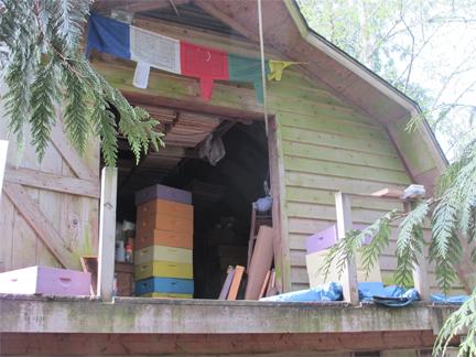 Bee Box Work area Brookfield Farm, Maple Falls Washington