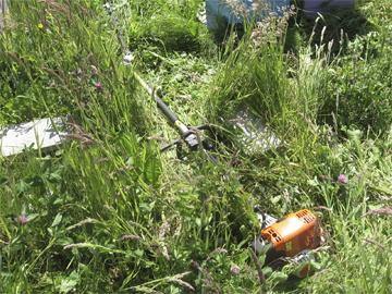Power Scythe used to cut grass
