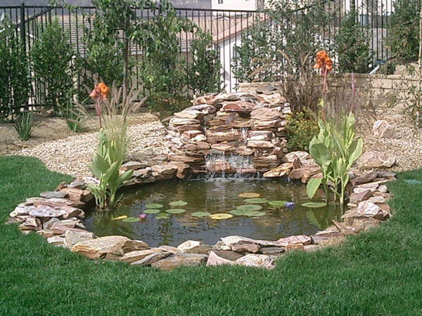 Cheap Fish Pond Ideas
