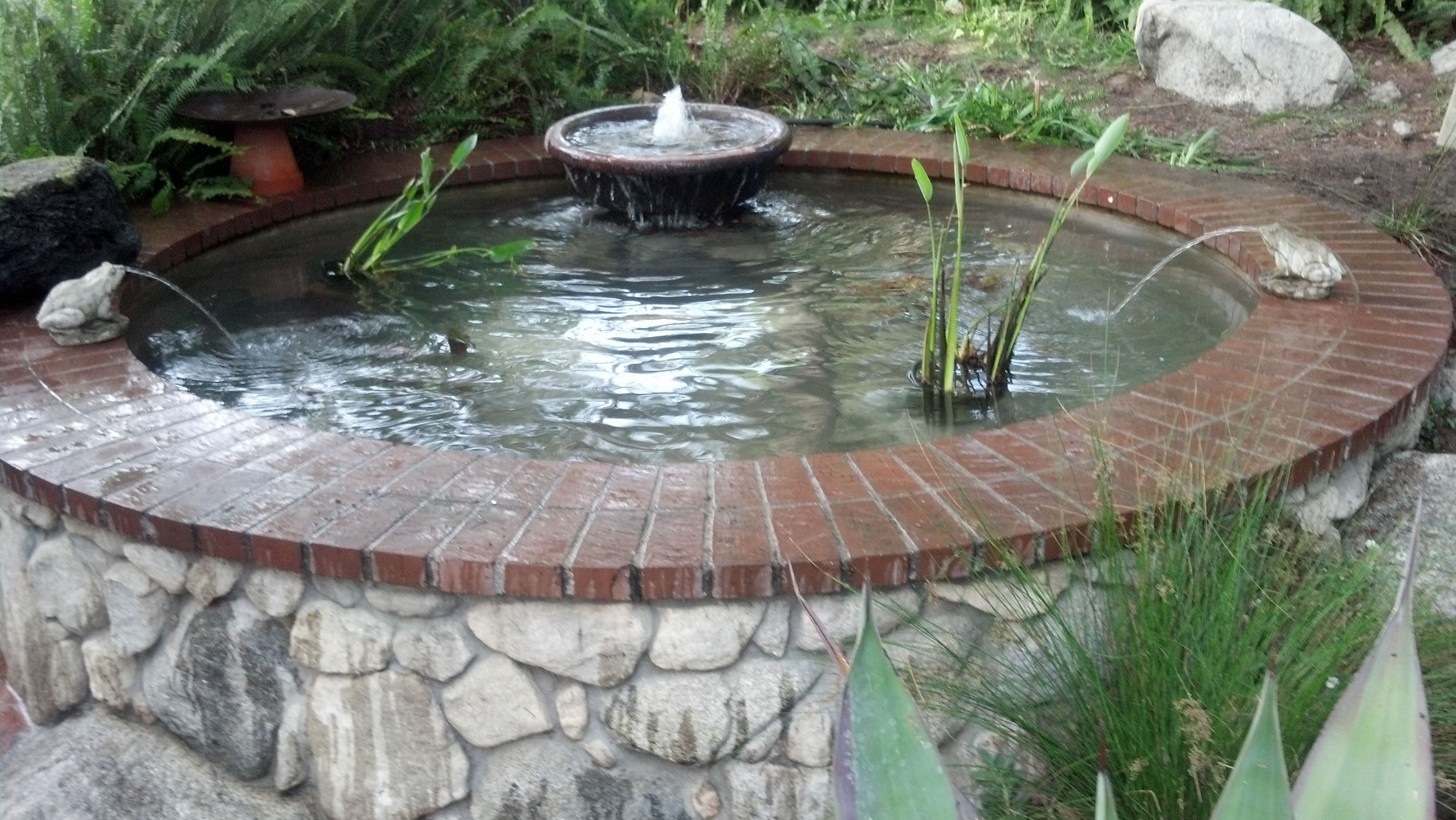 Koi Fish Pond Construction