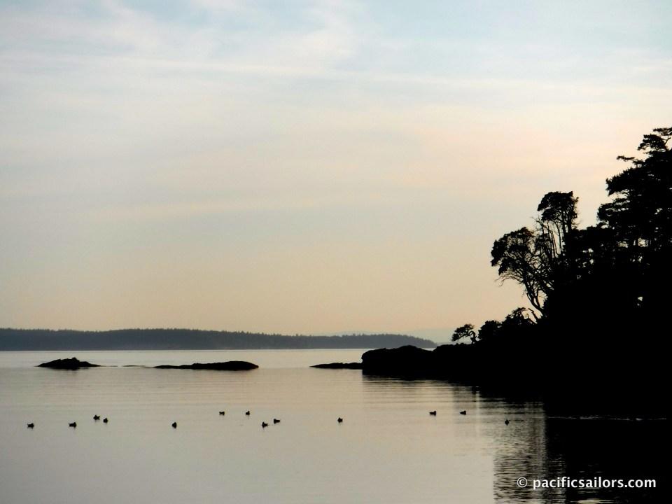Shallow Bay Sucia Island