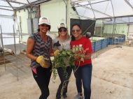 The Demo Divas: Michelle, Diana, Afshan