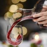 Cavavin Wine