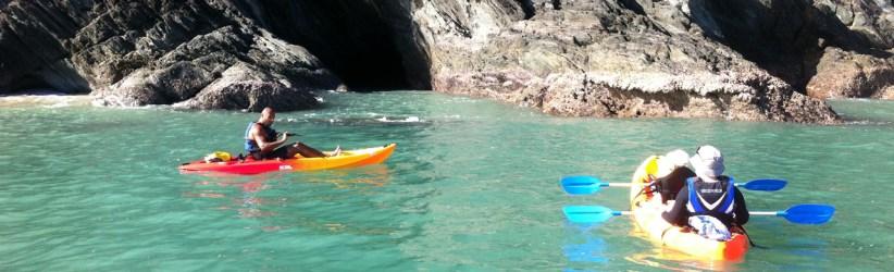 Palm Cove Kayaking