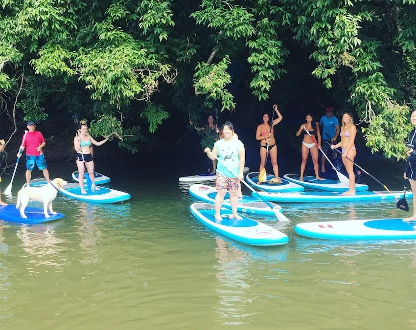 Adventure Sup tours in Cairns