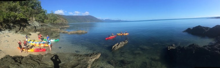 Palm Cove activities