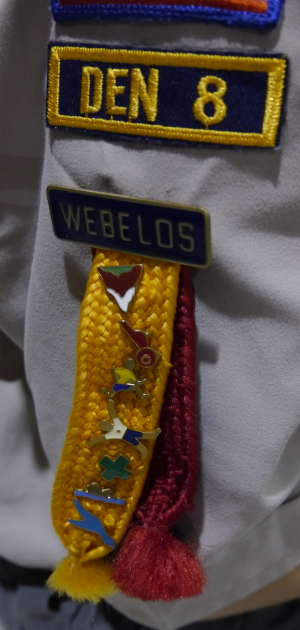 Webelos (4th and 5th grade Cub Scouts) earn activity badges worn on their Webelos colors.