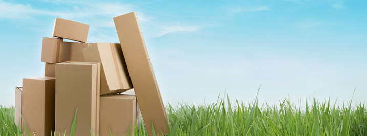The Future of Packaging: Sustainable and Eco-Friendly