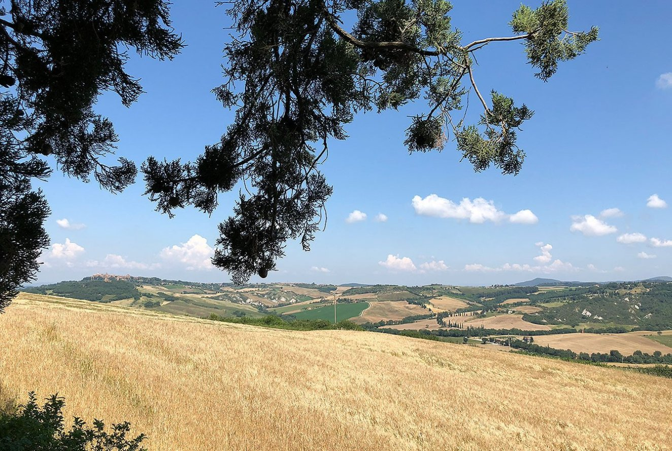 Beautiful field of Tuscan farmland