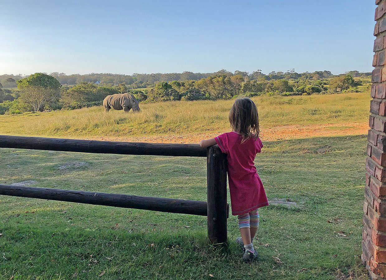 Game viewing from The Rhino Lodge at Kragga Kamma