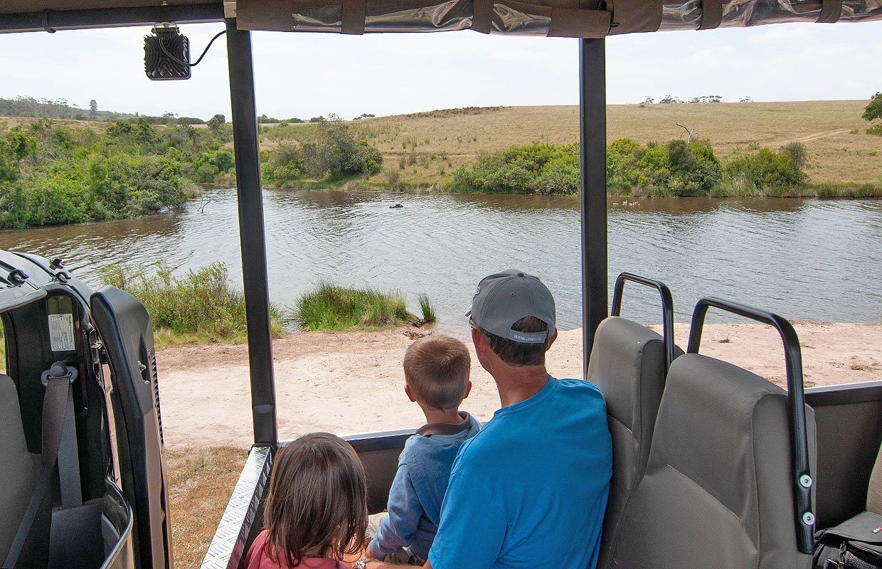 Guided Game drive in Plettenberg Bay Game reserve