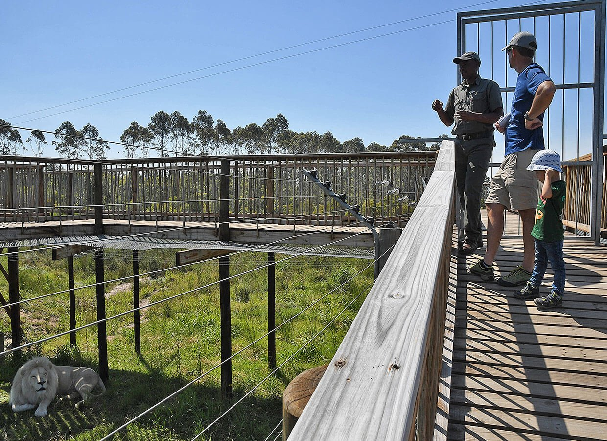 Private guided tour at Tenikwa :: South Africa