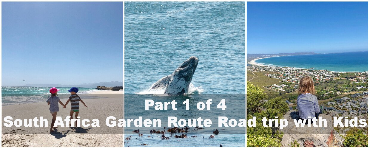 South Africa garden Route Road trip with kids