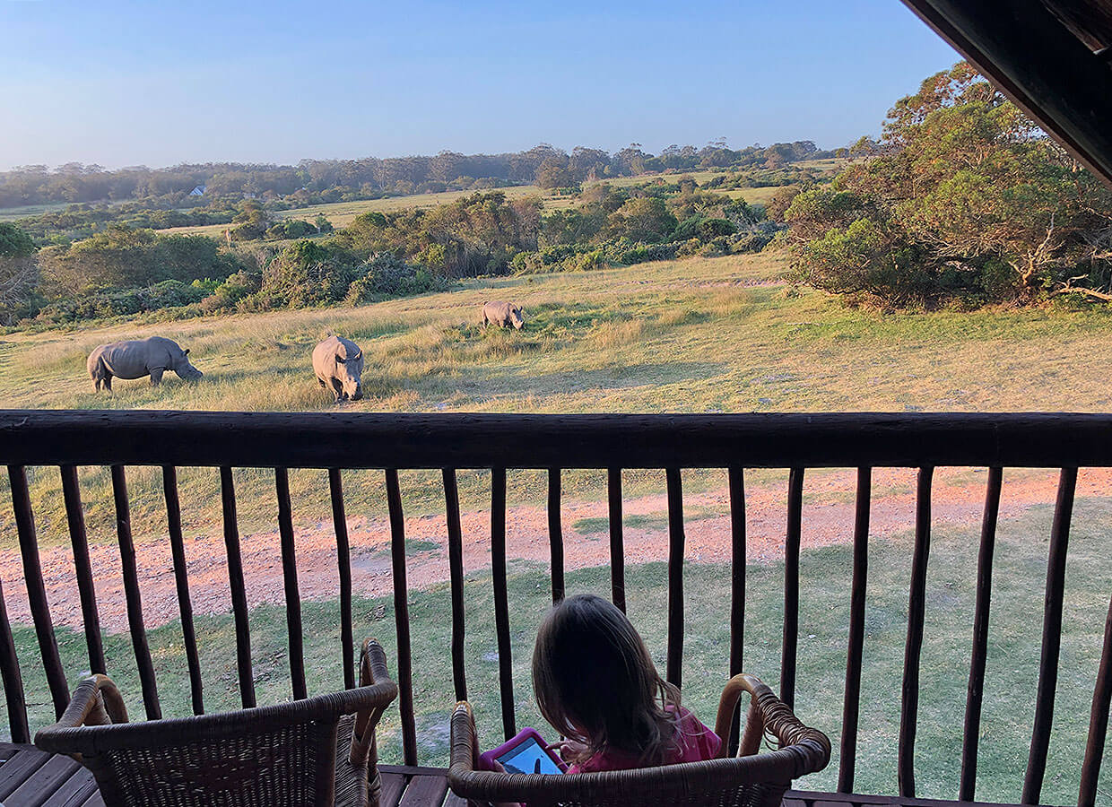 Balcony view at Kragga Kamma Game Park