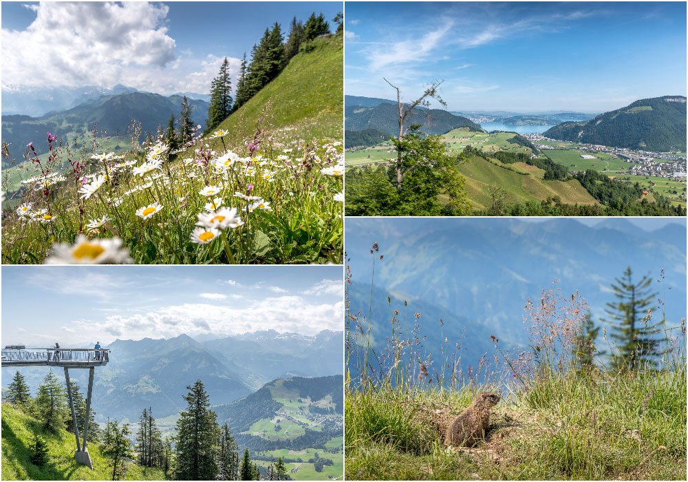 different views from the panorama path at the Stanserhorn
