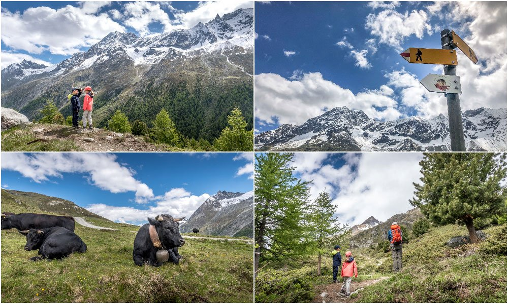 photos of kids on a mountain hike in Arolla