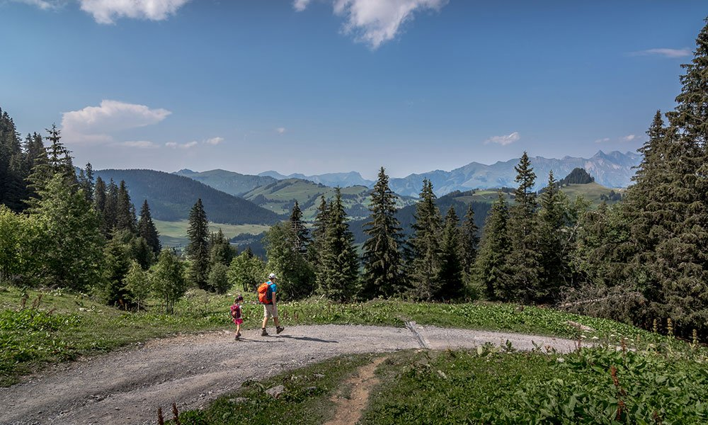 family walking down a hiking path in Vaud