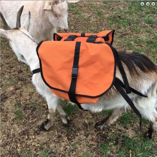 Pack Goat Training Saddle