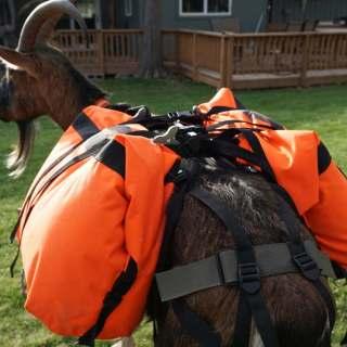Pack Goat Saddle – Marc Warnke Signature Series