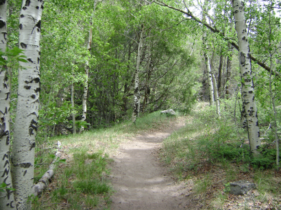Mosca Pass Trail