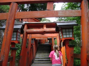 The Torii gates