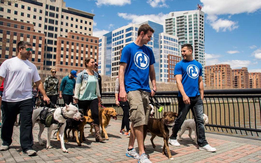 Dog Walking Hoboken NJ