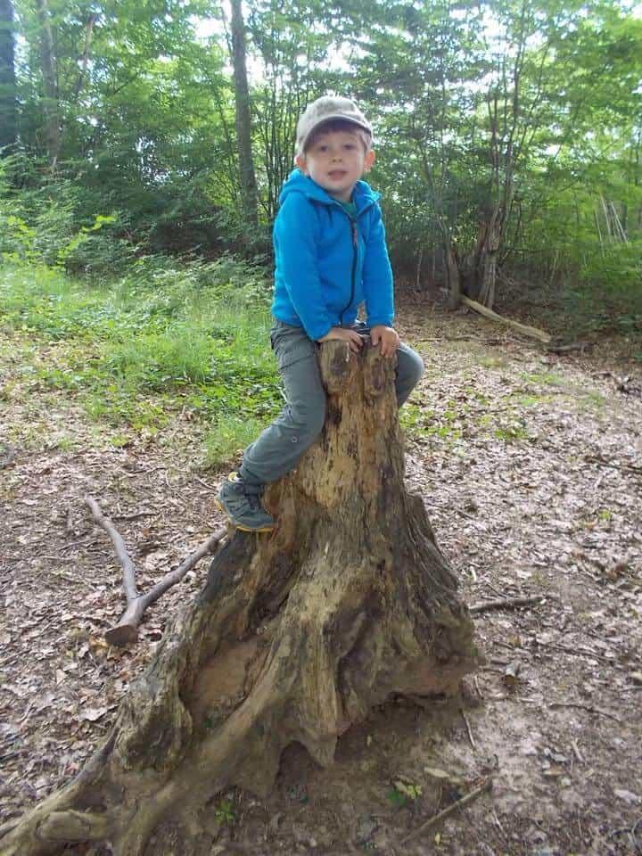 Little boy sitting on an old stump in his forest preschool.