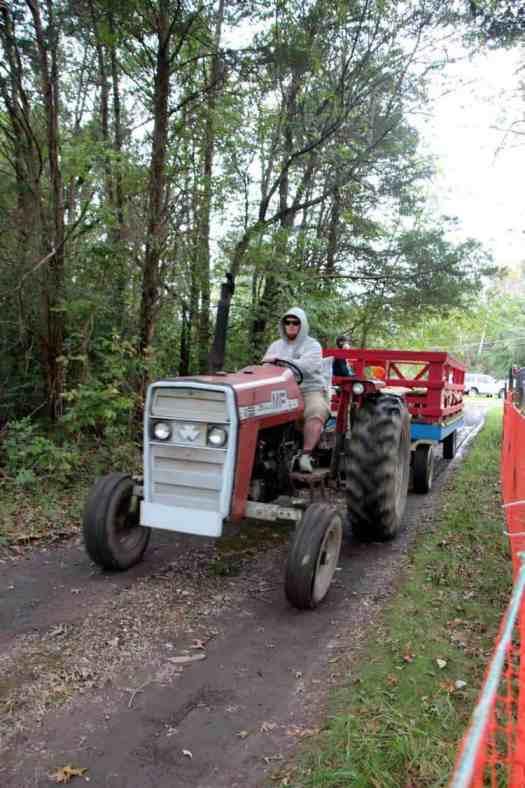 Burke Nursery Pumpkin Playground Tractor Rides