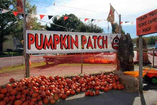 Burke Nursery Pumpkin Playground Virginia