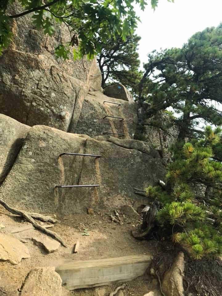 acadia national park hiking trails