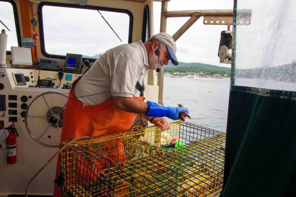 Lulu Lobster Boat captain in Bar Harbor, Maine showing a lobster trap