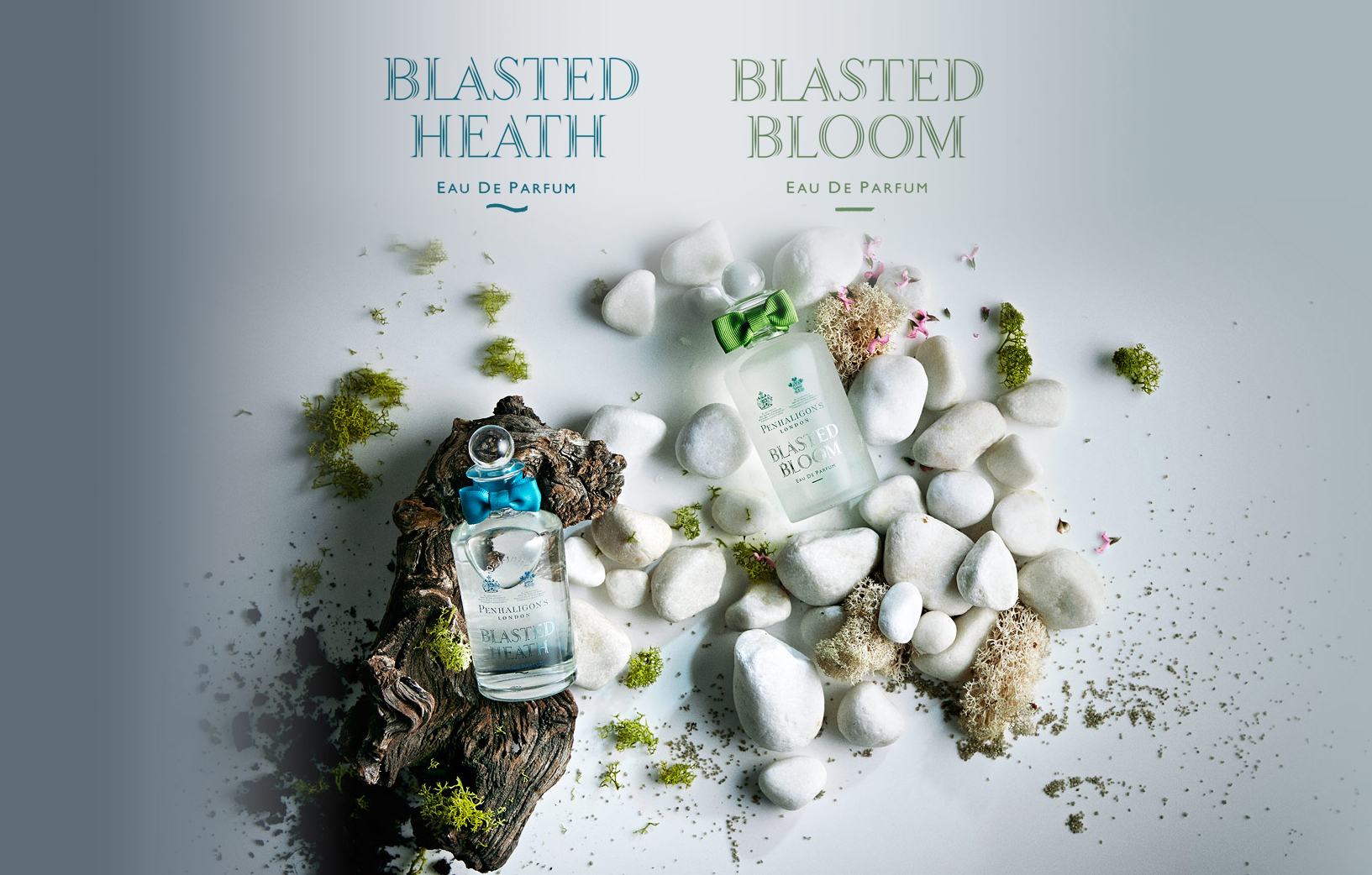 BLASTED HEATH/BLOOM